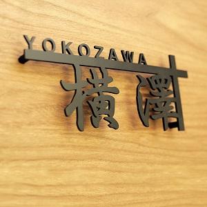 漢字を横長にデザインしたかっこいいアイアン表札を撮影した画像